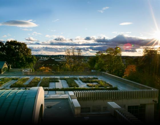 Sunset over a rooftop garden at Tufts