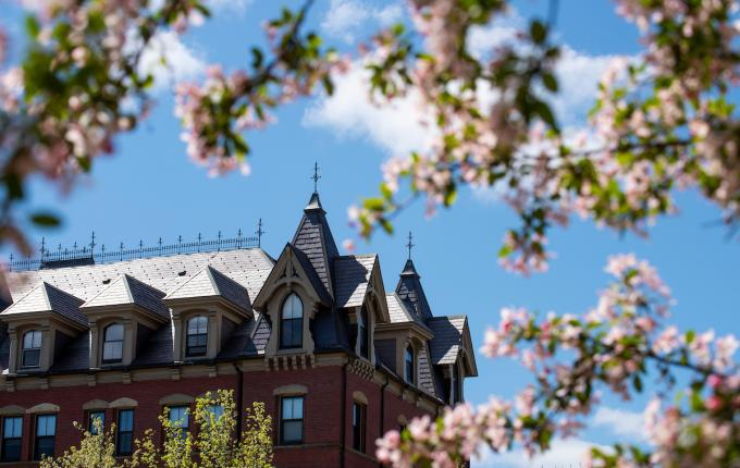 Campus building seen through blossoming trees